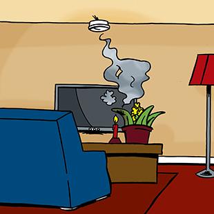 rookmelder